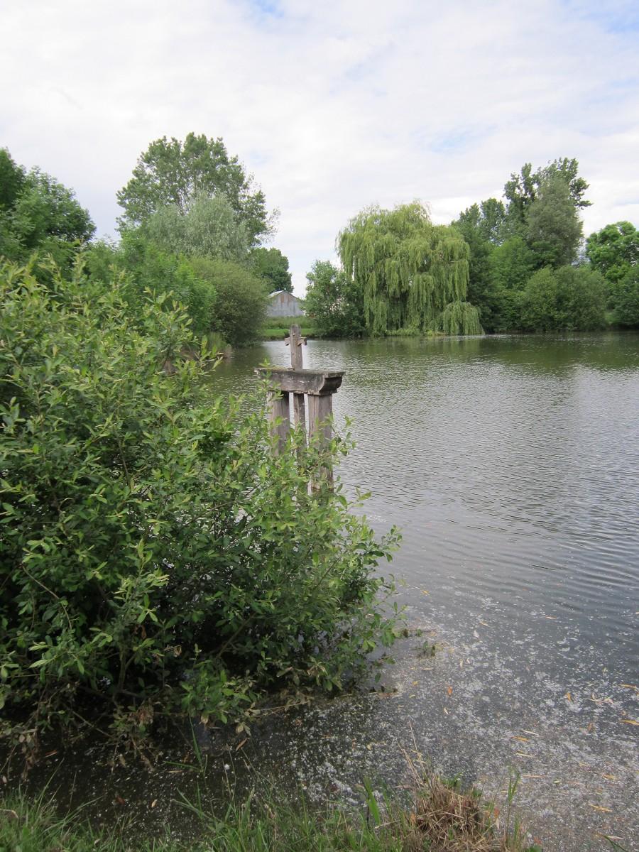 L'étang communal